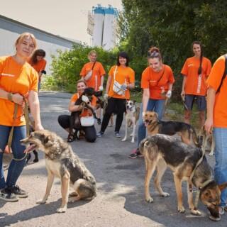 До дня захисту безпритульних тварин Фокстрот зняв ролик